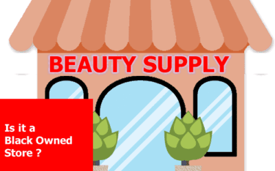 THE OWNERSHIP OF THE KOREAN BEAUTY SUPPLY STORES